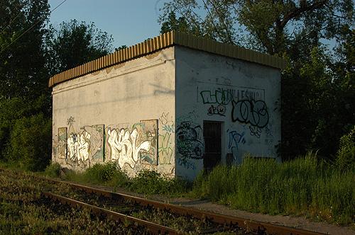 DSC_1326