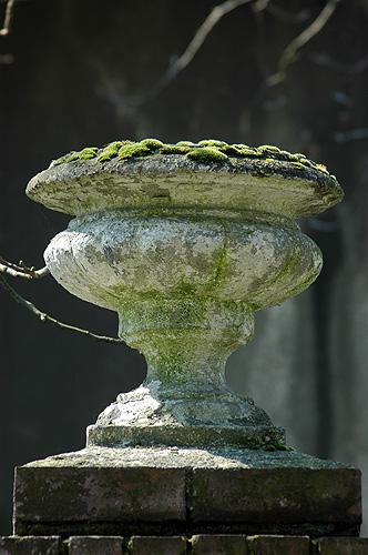 Urna na Junackiej 1