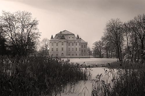 zamek w sepii