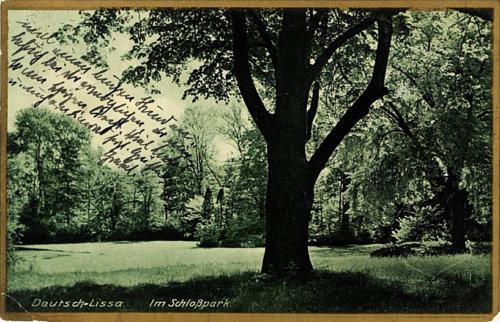 30 Deutsch-Lissa. Im Schlosspark.
